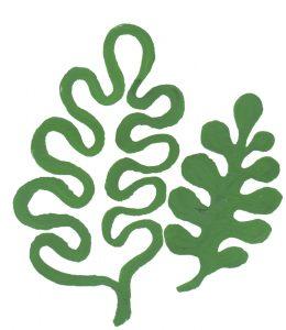 bladliten